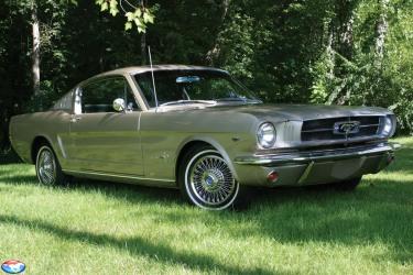 1965 Fastback
