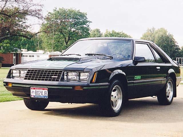 Ford Mustang History 1979  Shnackcom