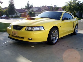 2002 Zinc Yellow Mustang GT