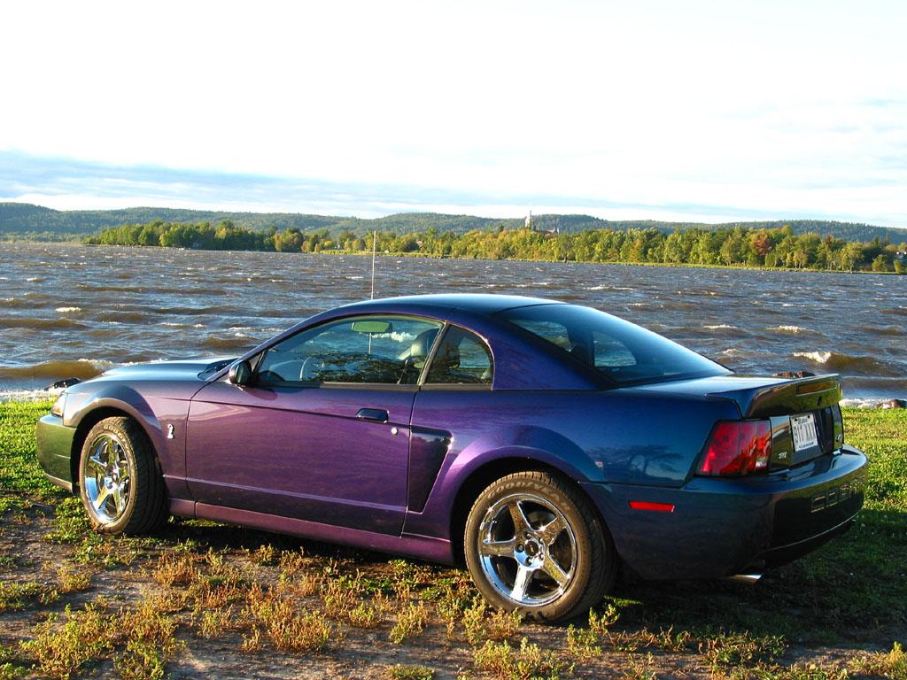 Ford Mustang History 2004 Shnack Com