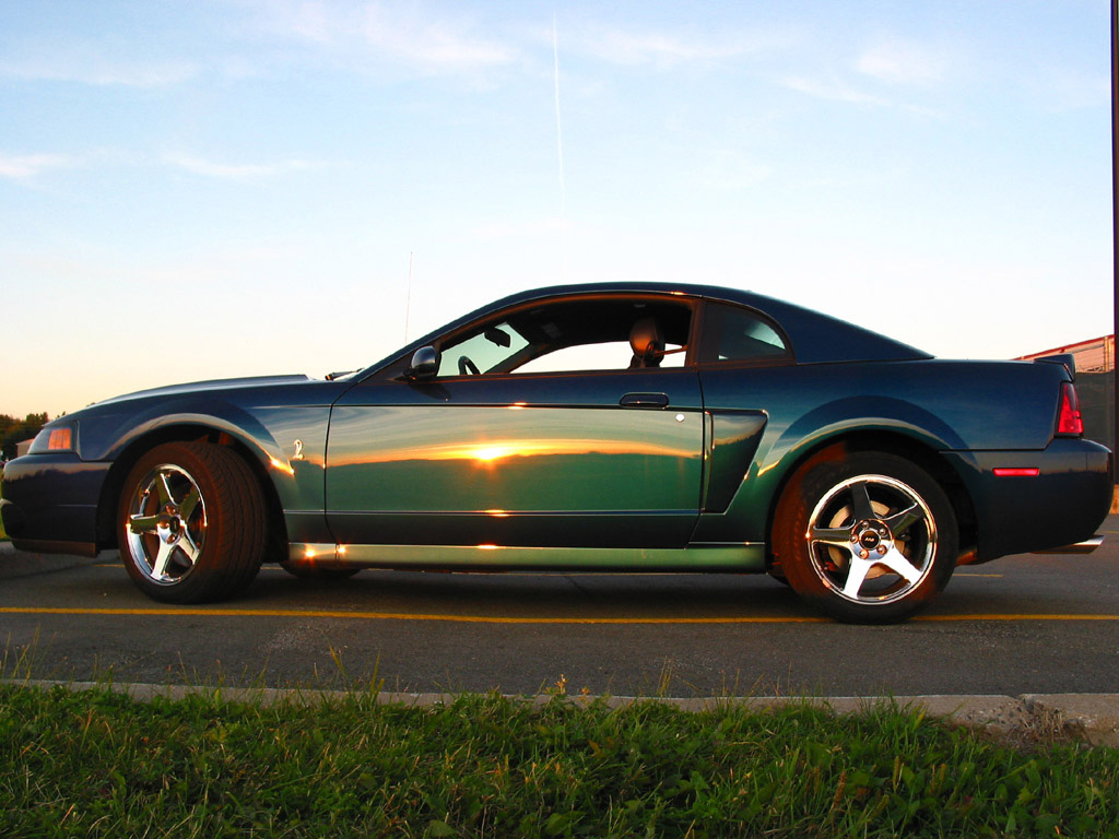 Ford Mustang Photo Gallery: 2004 Cobra Mystichrome ...