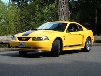 Screaming Yellow Mach 1