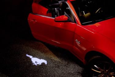 2013 Pony projection door light