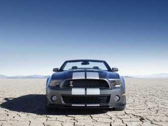 Shelby_Mustang_GT500_car_pictures_pics.jpg