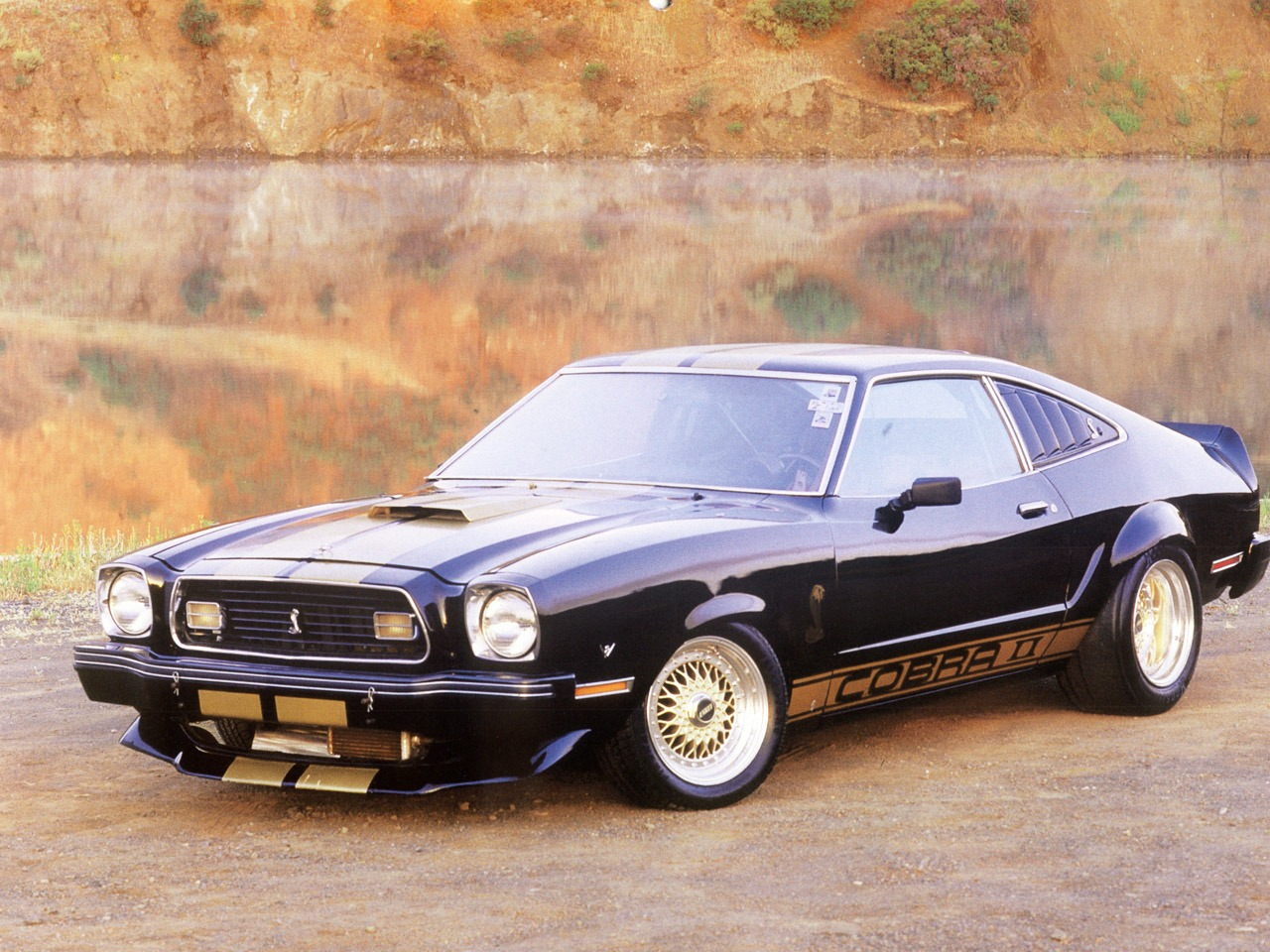 ford mustang photo gallery 1977 mustang cobra ii. Black Bedroom Furniture Sets. Home Design Ideas