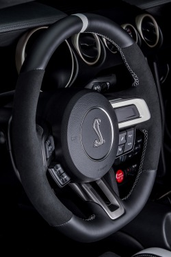 2016 Shelby GT350R Interior