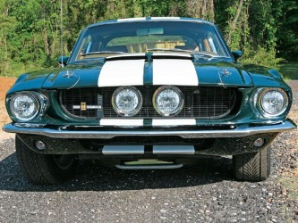 Mustangs Rock